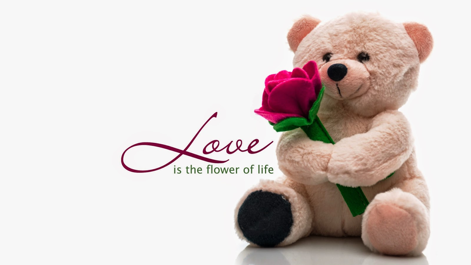Happy Teddy Day Love Wallpaper For Girlfriend Pics