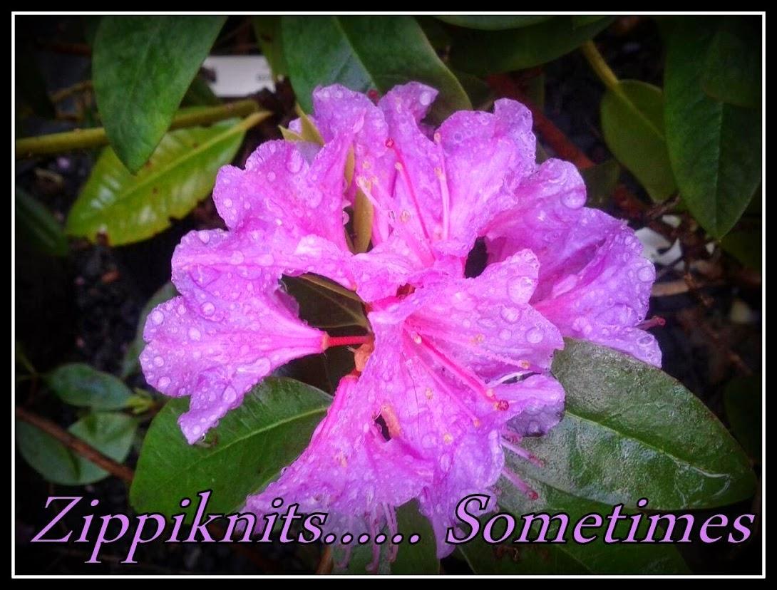 Zippiknits........Sometimes