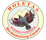 Boletas birding