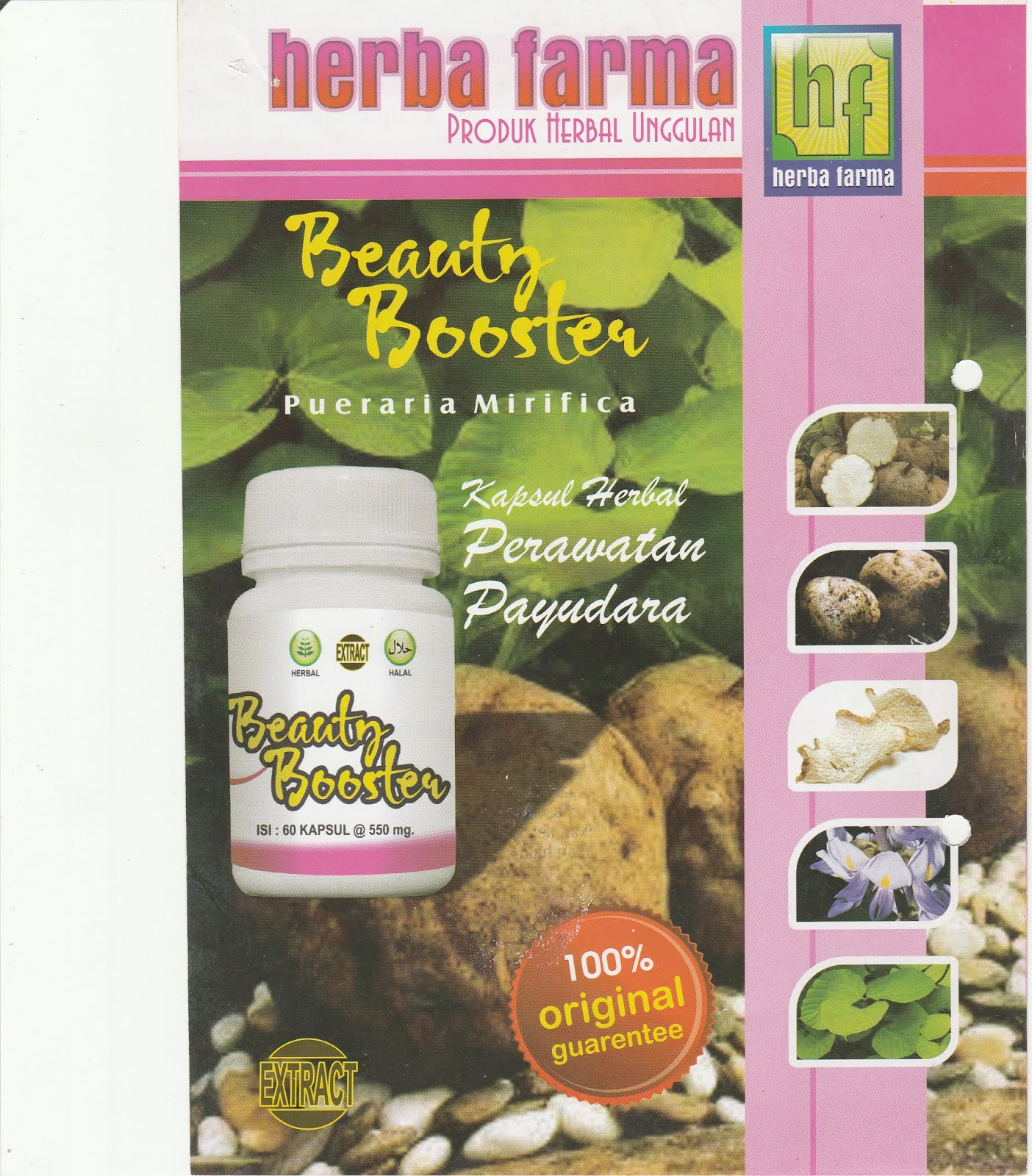 Alat Terapi Dan Herbal Testimoni Pengguna Tusuk Jari Kapsul Original Asam Urat Rematik Dll Beauty Booster