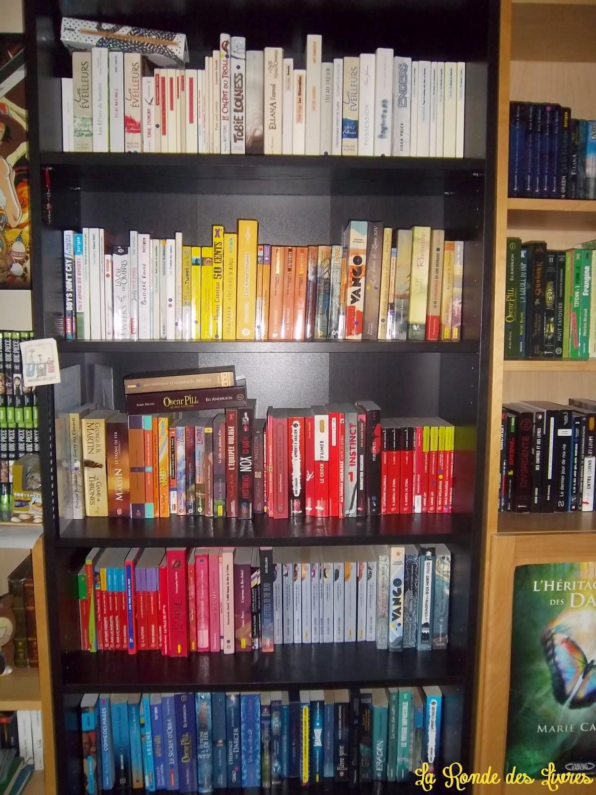la ronde des livres les d fis pelucheux 3 biblioth que en couleur. Black Bedroom Furniture Sets. Home Design Ideas