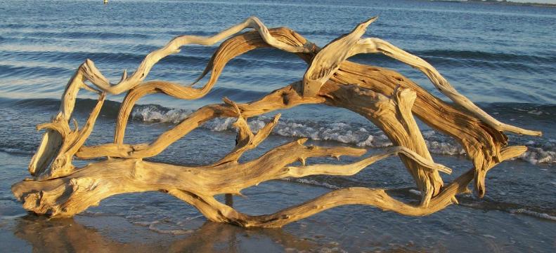 Haus Design Driftwood