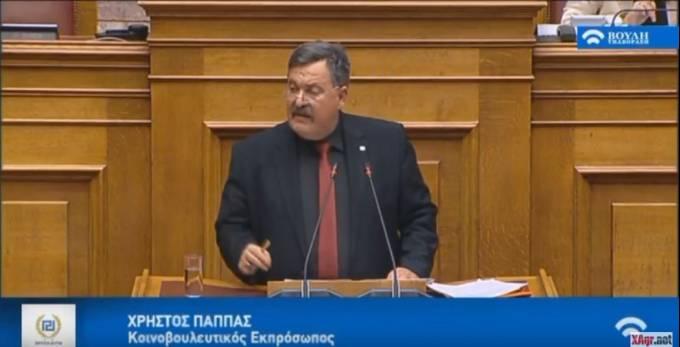 Χ. Παππάς: Χρυσή Αυγή σταθερή στην εθνική γραμμή - Κανένας συμβιβασμός για την Μακεδονία μας! [Βίντεο]