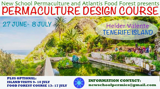 Summer Permaculture Design Course