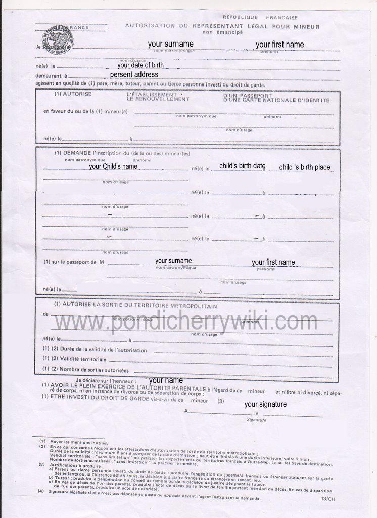 French Passport Application Form Nurufunicaasl