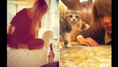 Menurut Penelitian, kucing cenderung meniru kebiasaan pemiliknya