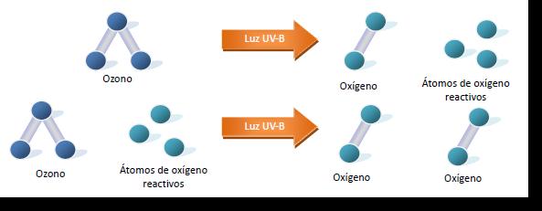 Generalidades del Ozono