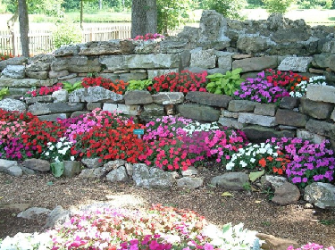 Garden Design 2011: Rock Garden Designs