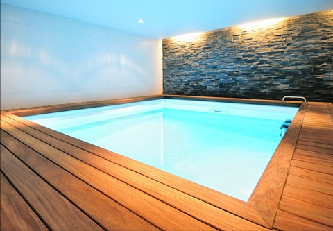 Home design minimalist wood clad appearance basement spa Basement swimming pool construction