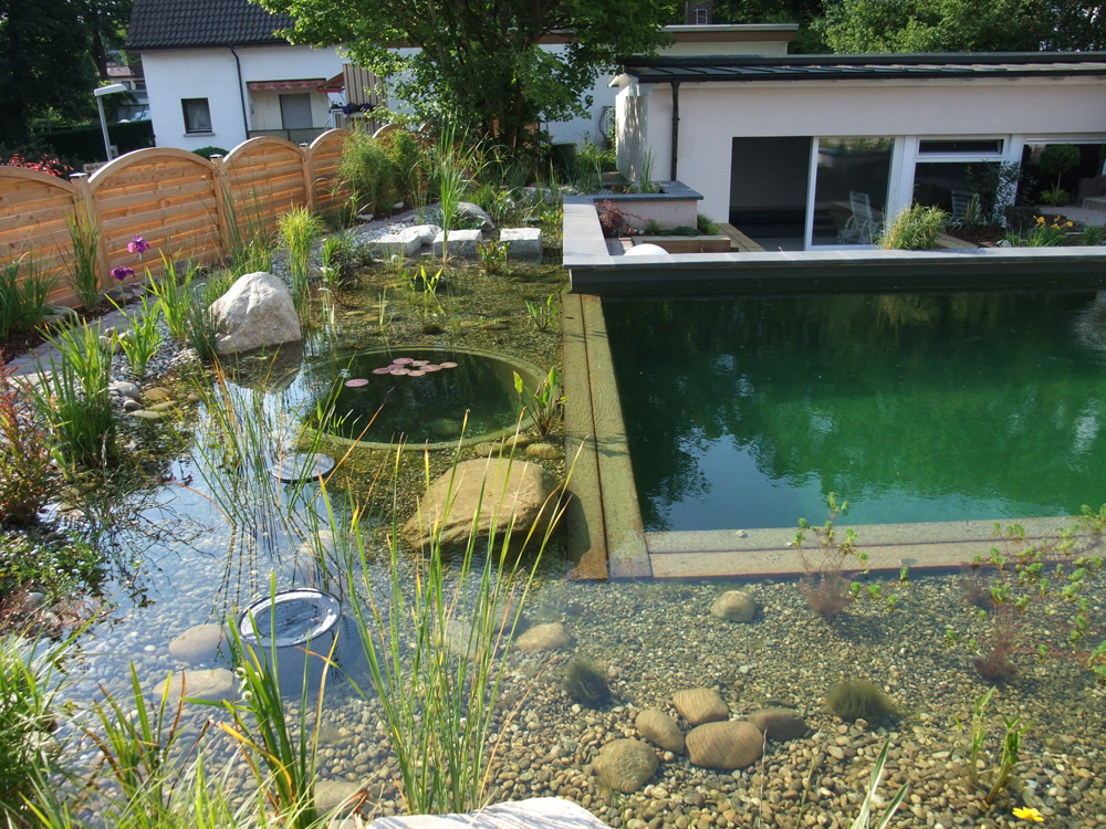Natural swimming pools now in india blue iris pools Natural swimming pool builders
