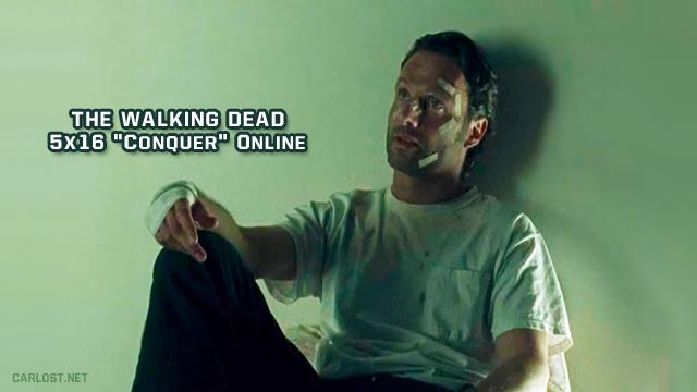The Walking Dead 5x16 Online (Season Finale)