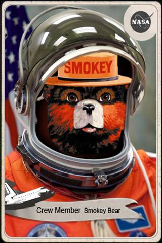 Image result for smokey bear in space