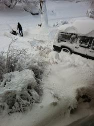 Long Island 2010 Snow Storm