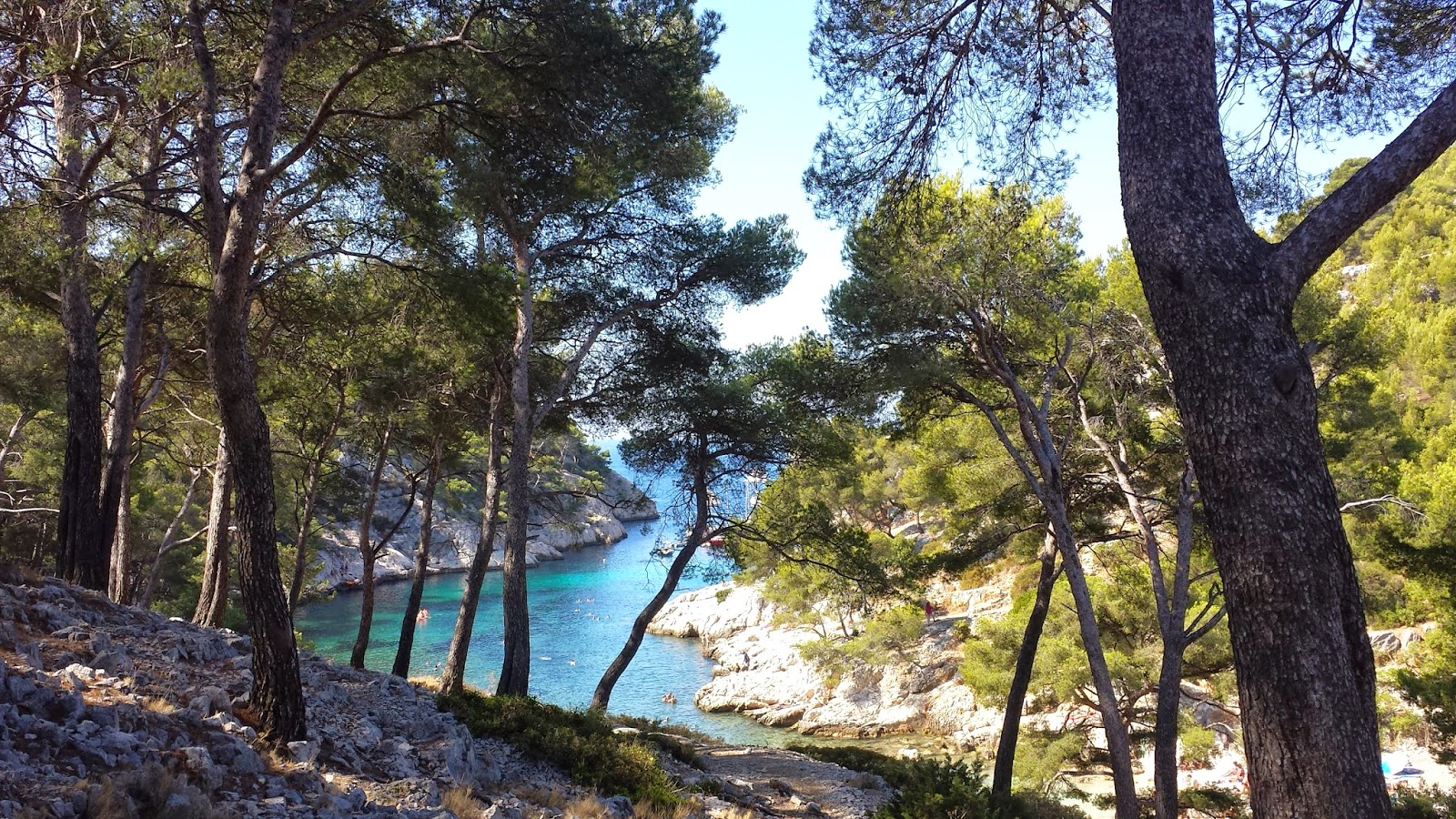 Calanques de Port Pin