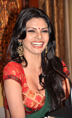 Sherlyn Chopra will walk on the red carpet of Cannes 2013