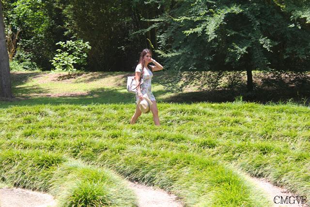 diana dazzling, fashion blogger, cmgvb, como me gusta vivir bien, Kanapaha Botanical Gardens, garden, flowers, Gainesville