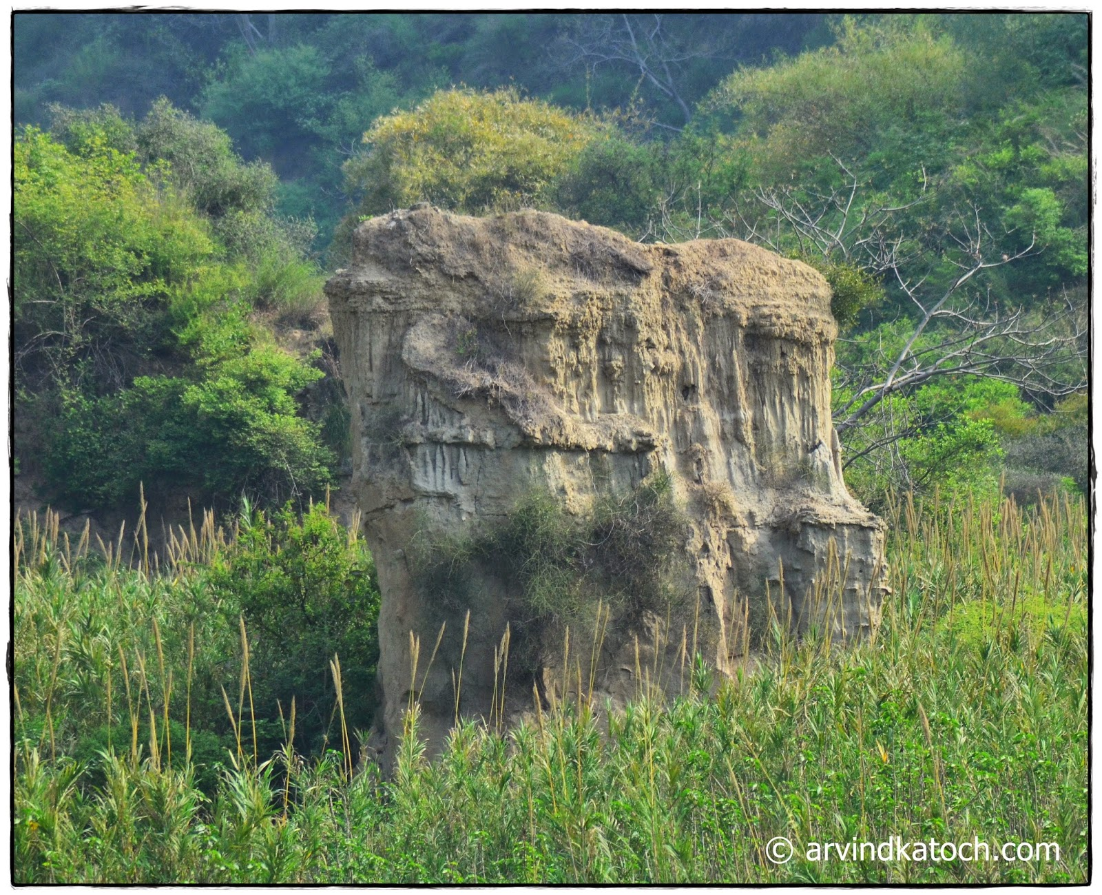 Man's face, rock, appear,