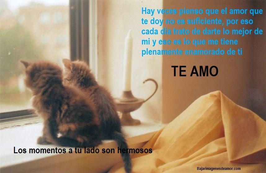 Tiernas imagenes de amor con mensajes, imagenes de gatitos, perritos y bebes hermosos