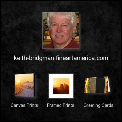 Now On Fine Art America - Click On Image to Take You There