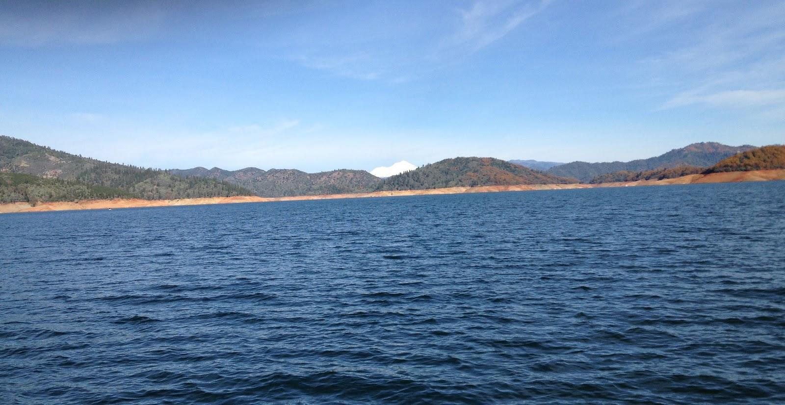 Another q lake shasta for Lake shasta fishing