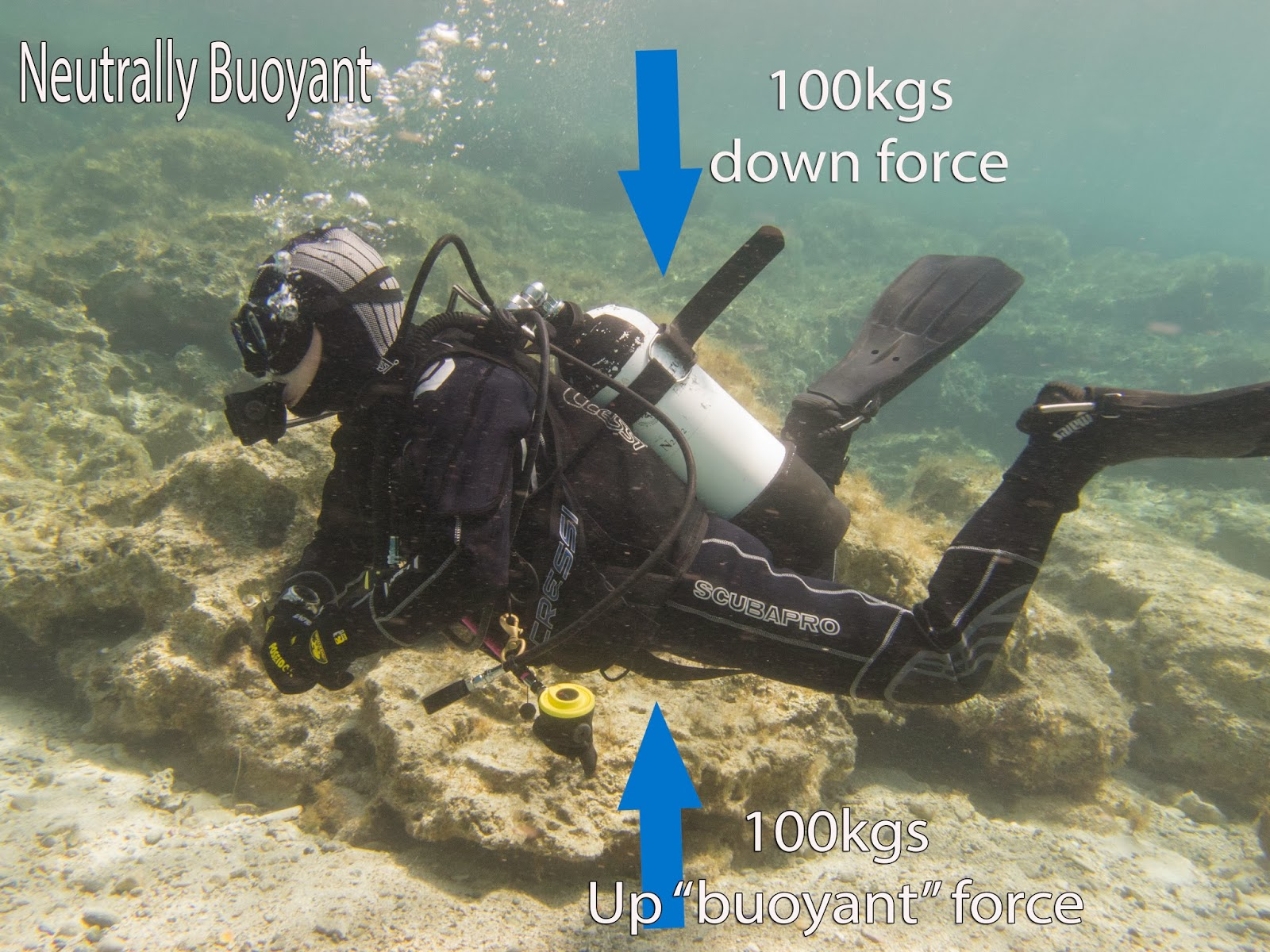 Diver has equal water displacement to weight