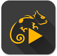 Stellio Music Player v4.31 Apk + Unlocker for android