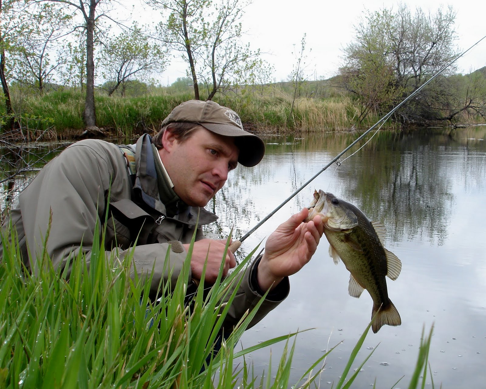 Colorado fly fishing reports blossoms bass bellyaches for Fishing with minnows for bass