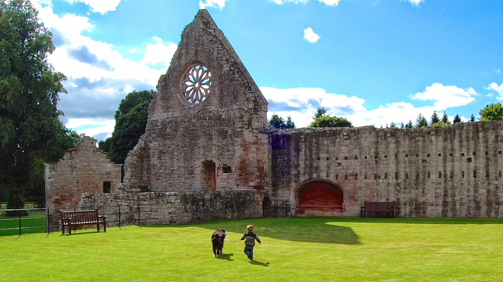 Mattie romping with Jackson at Dryburgh Abbey