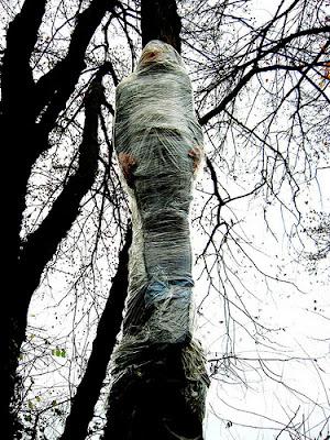 Street la street art di elfo tra installazioni umorismo - Art 79 codice della strada pneumatici diversi ...