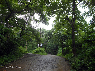 Climb to the Tungareshwar temple in Vasai, Mumbai
