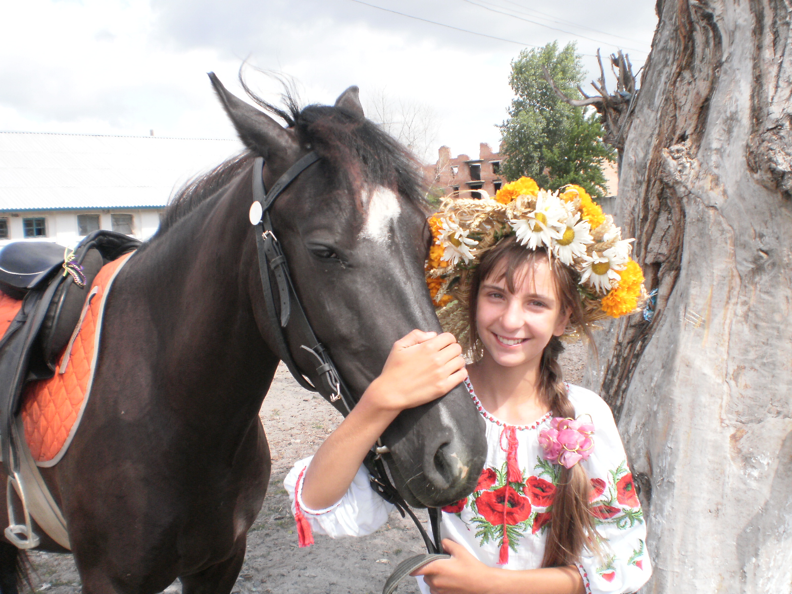 Як ебутса кони 16 фотография