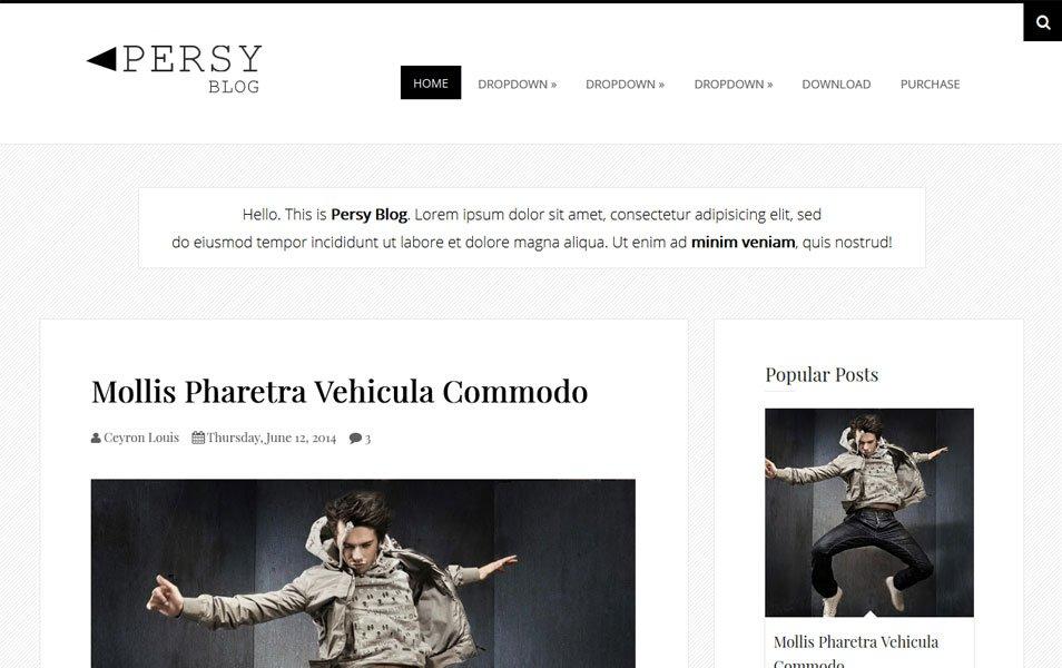 Persy Minimalist Blogger Tema