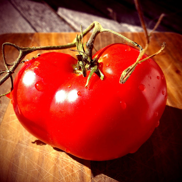 A bright red tomato with vines still attached sitting on a cutting board