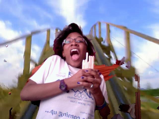 Popsicle Roller Coaster