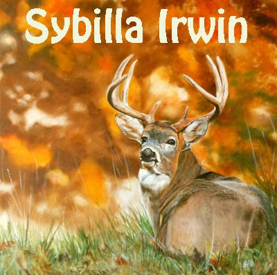Art of Nature by Sybilla Irwin