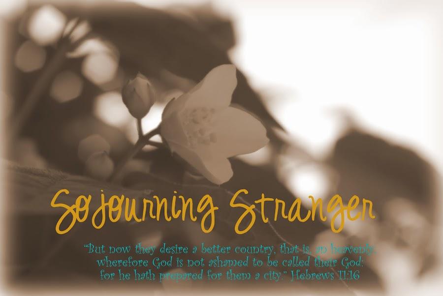 Sojourning Stranger