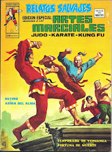 Artes Marciales 3