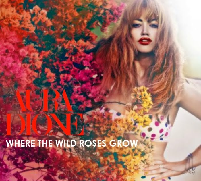Just Cd Cover: Aura Dione : Where the wild roses grow (MBM