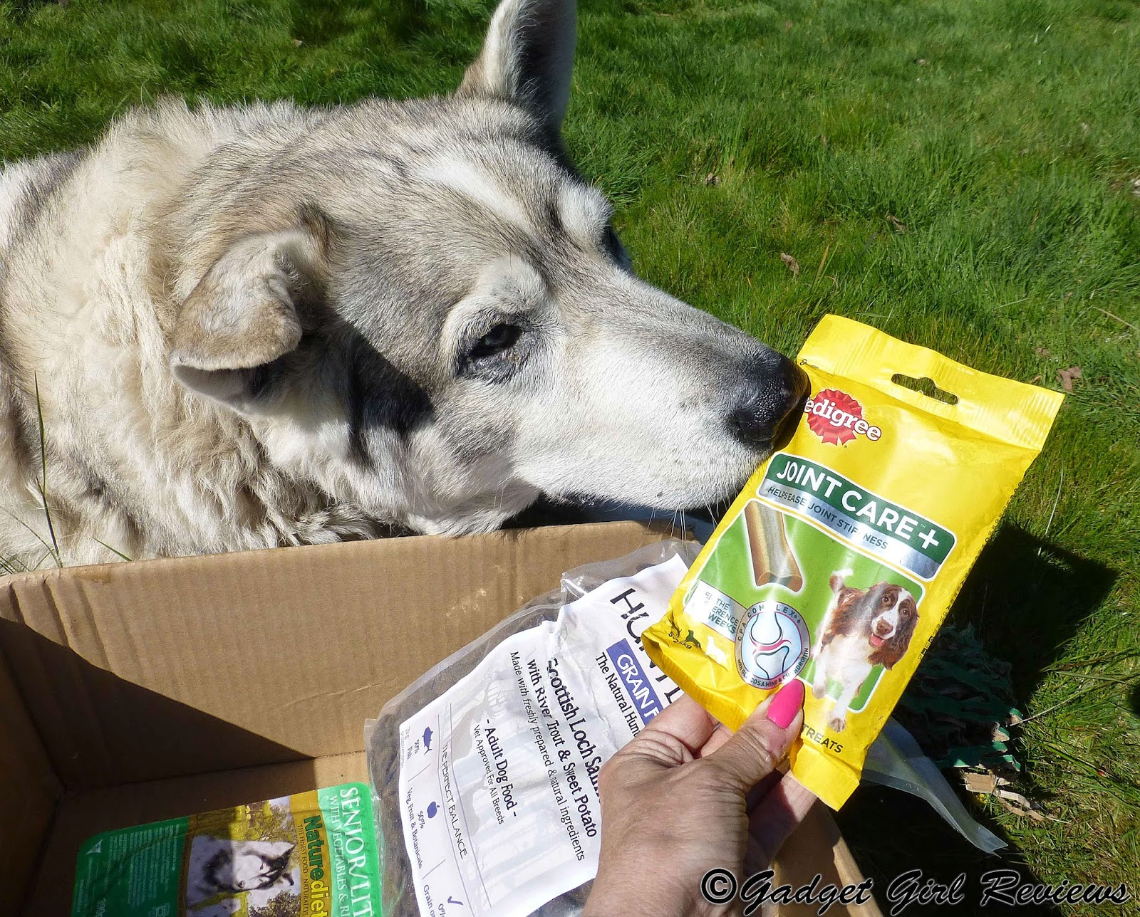 Huntland Dog Food Review