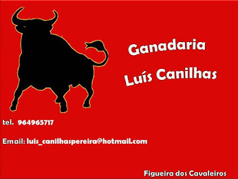 Luís Canilhas