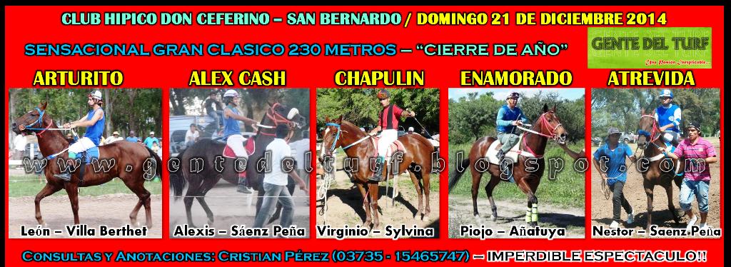 San Bernardo Mucho Mas 21-12