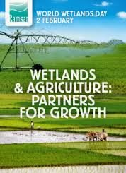 World Wetlands 2014