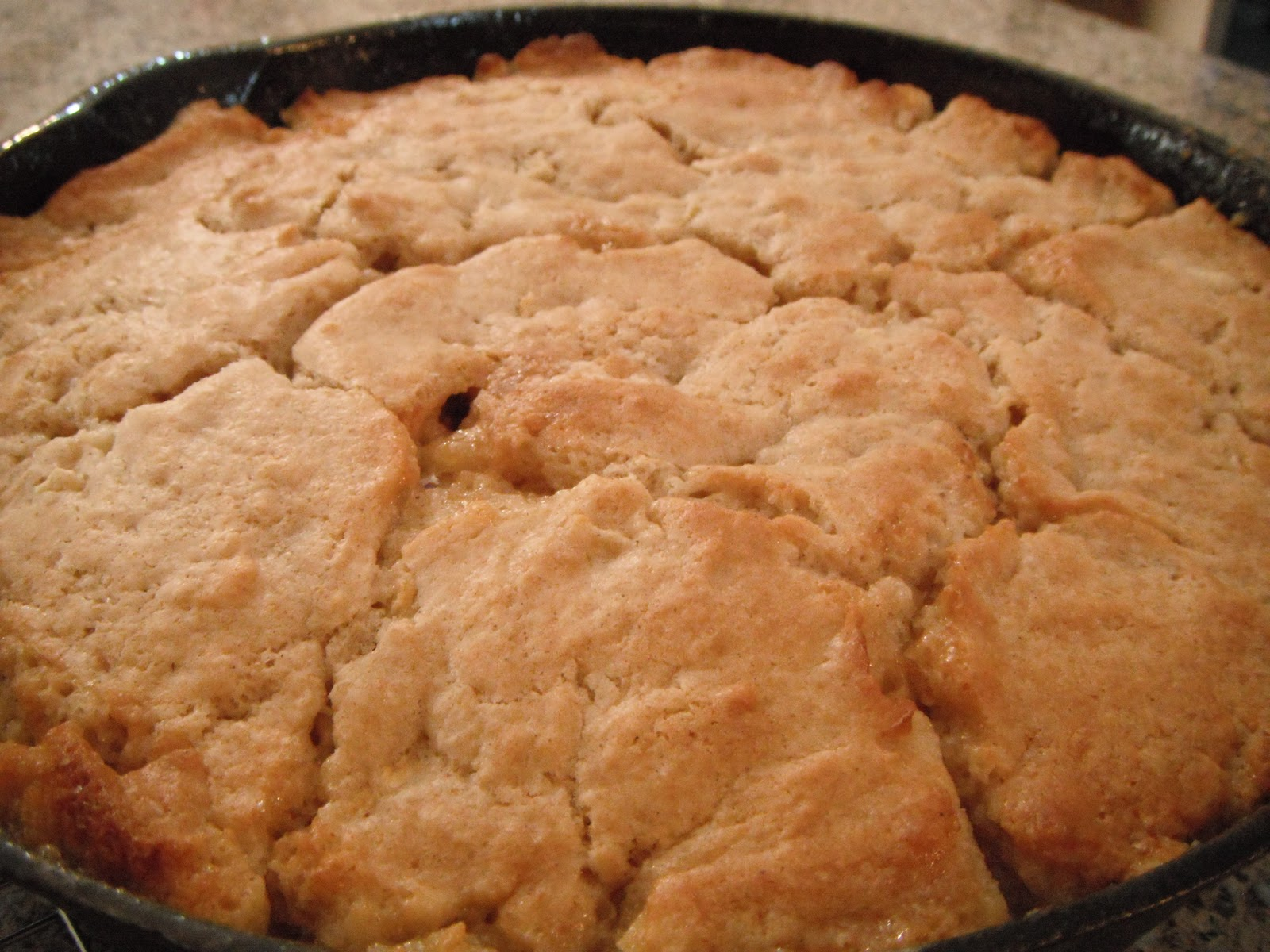 If I had anything to say...: apple cake in a cast iron skillet