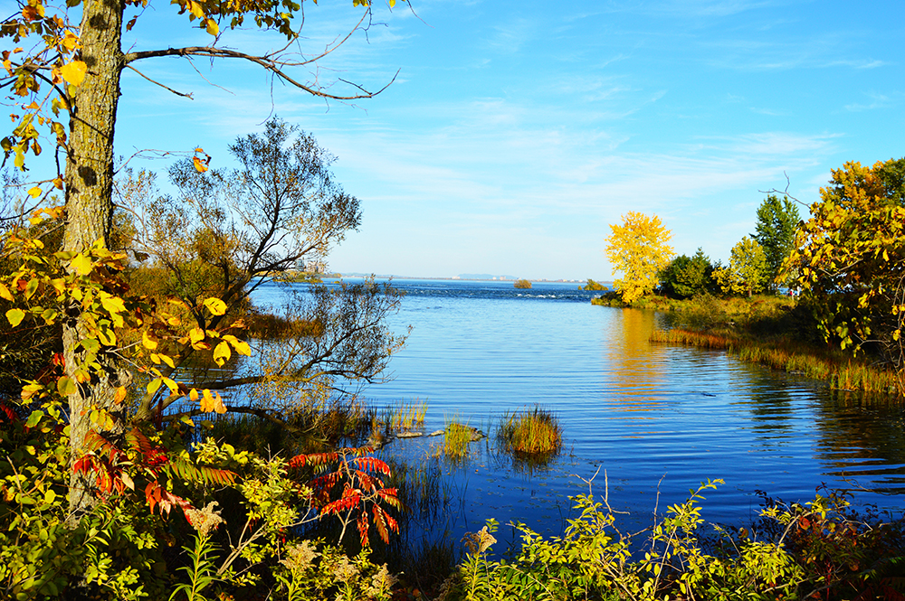 Fall season, autumn season, beautiful places, montreal, quebec, quebec original