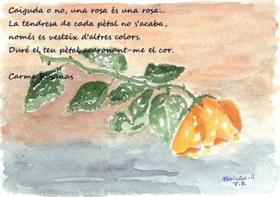 Caiguda o no... (Antoni Fortunyo)