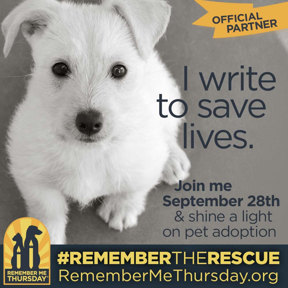 Remember The Rescue