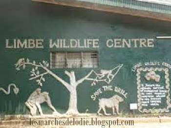 Les Marches d'Elodie - Limbe Wildlife Centre - Zoo