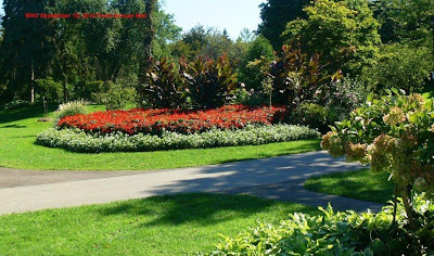 Bright annuals, perennials, shrubs and trees greet visitors at BRG in Port Credit.