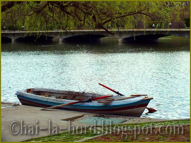 pod si barca trasa la mal Parcul Carol