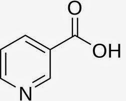 Funções e benefícios da Vitamina B3